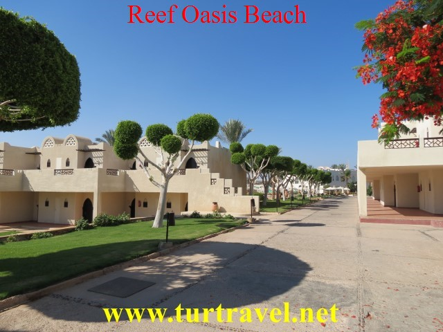 Отель Reef Oasis Beach Resort 5*, пляж reef beach шарм эль шейх фото, пляж reef beach шарм эль шейх отзывы, Риф Оазис Бич Резорт, риф оазис бич резорт видео, риф оазис бич видео 2018, reef oasis beach resort видео обзор,reef oasis beach resort 5 youtube, reef oasis beach resort sharm el sheikh, риф оазис бич видео,Риф Оазис Бич Аквапарк, отель reef oasis beach resort отзывы, reef oasis beach resort 5* видео, пляж reef beach, пляж reef beach шарм эль шейх, пляж reef beach отзывы 2018